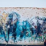 DEEP ELLUMPHANTS by Adrian Torres